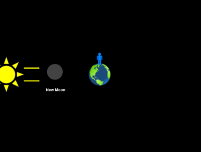 Interactive Phases of the Moon