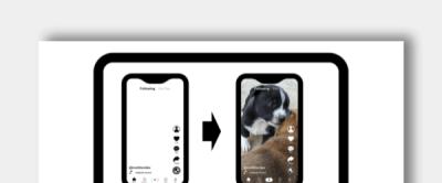 TikTok Template Icon
